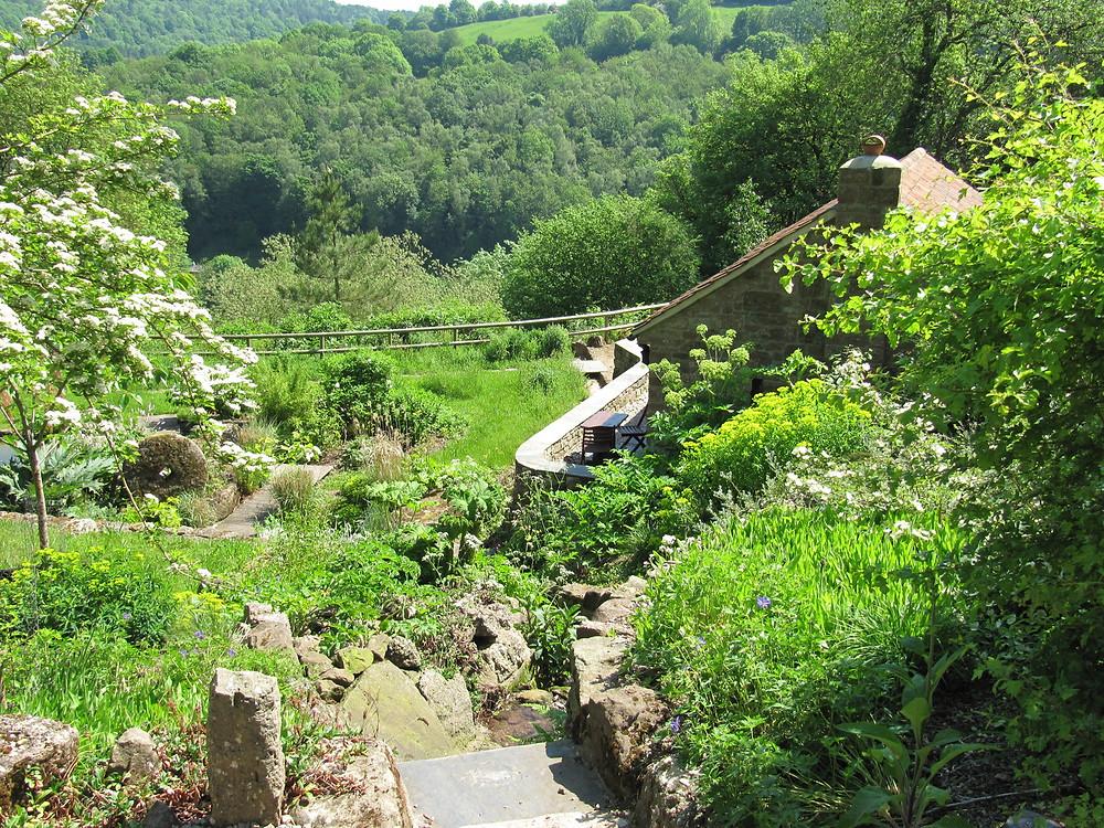 Wild garden of British native species and local stone found and reused around the garden.