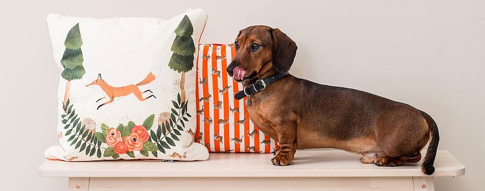 Fox and rabbit cushions.
