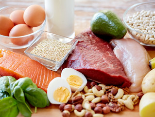 An Introduction to Protein