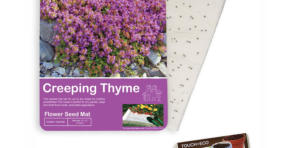 CREEPING THYME FLOWER SEED MAT WITH SOIL BLOCK