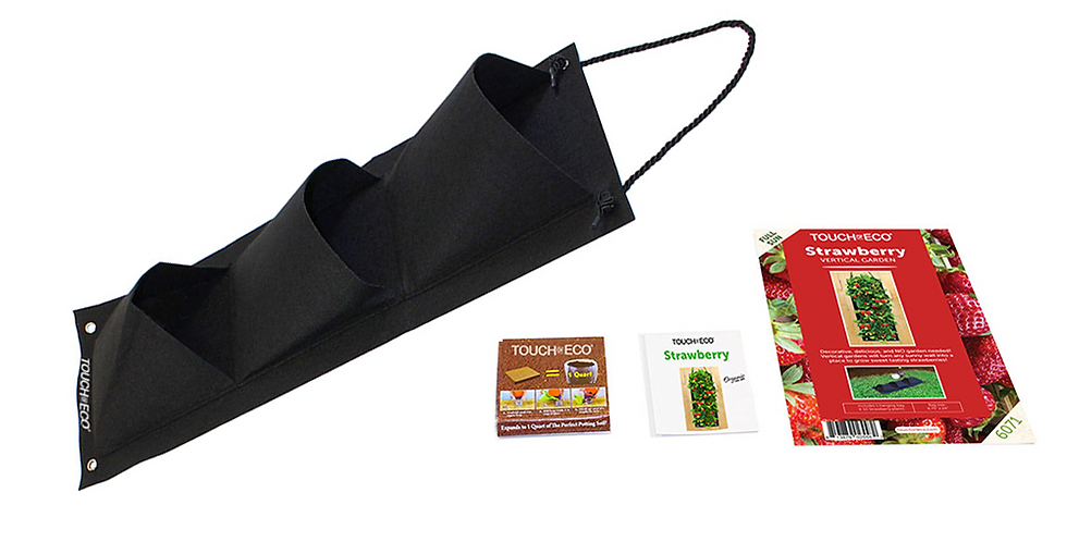 ORGANIC STRAWBERRY HANGING SEED BAG WITH SOIL BLOCK