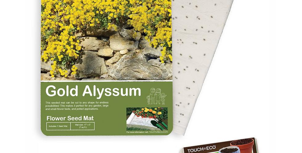 GOLD ALYSSUM FLOWER SEED MAT WITH SOIL BLOCK