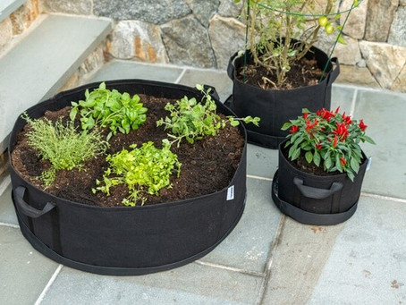 Benefits Of Using A Grow Bag For Gardening