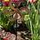 Thumbnail: Whimsy Whirl Solar Led Metal Garden Wind Spinner Stake Light
