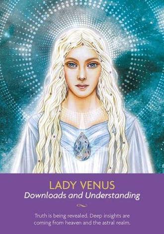 Lady Venus 維納斯女士