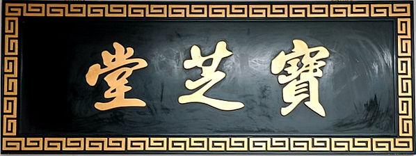寶芝堂藥業公司歷史