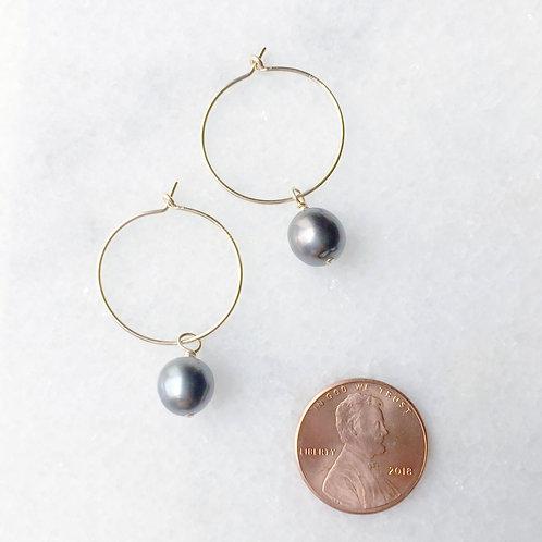 Tahitian Black Pearls, Gold Filled Hoop Earrings