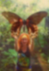 Butterfly Philippines.jpg
