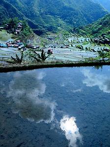 Risaie terrazzate Filippine