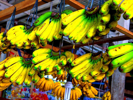 BananaDavao.jpg