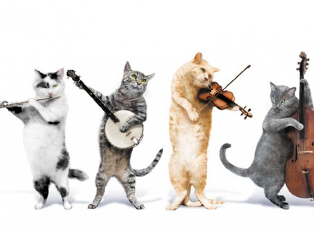 Comedy Music/Piano Music!