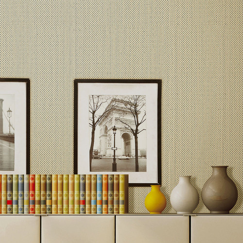 Amaryllis-Collection.jpg