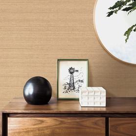 Anthurium-Collection.jpg
