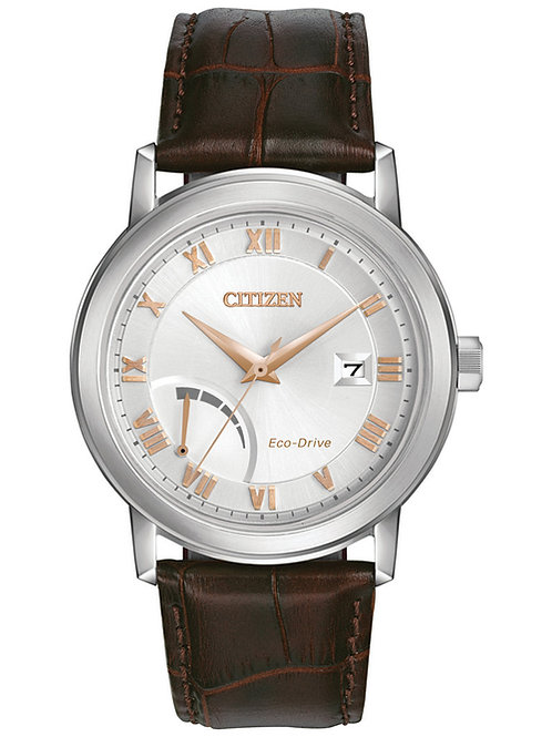 Citizen Eco-Drive Power Reserve Watch