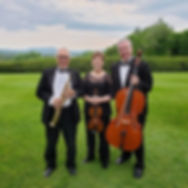 Trio at Tanglewood.jpg
