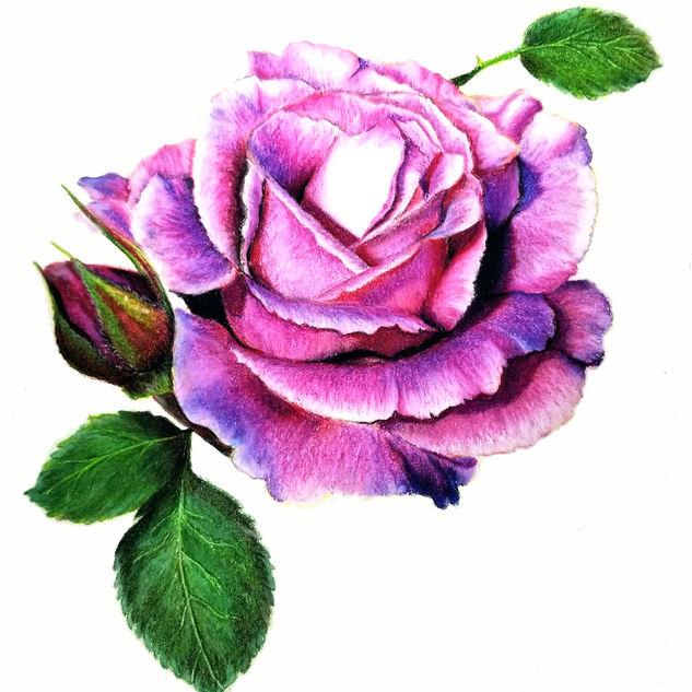 rose print no mat.jpg