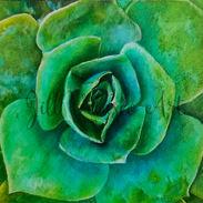 succulent web preview.jpg