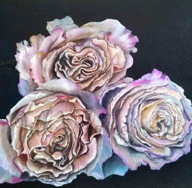triple rose web preview.jpg