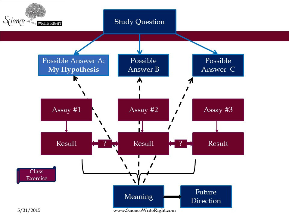 science write right how to write a scientific paper project logic flow chart.jpg