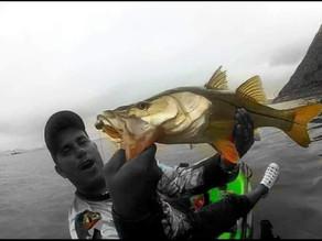 Dinho Madeira Pescador  Esportivo Caiaque Fishing