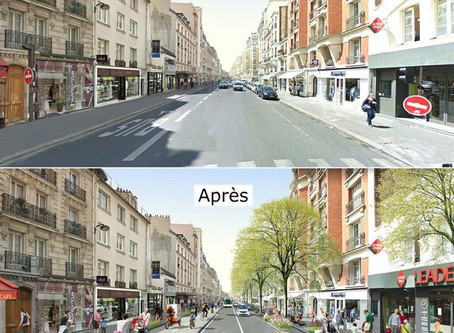 Fransa'da Yeşil Dalga