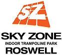 SkyZone Logo.jpg