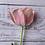 Thumbnail: Tulips Mix