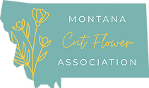 MCFA_Logo_color.png