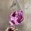 Thumbnail: Tulip-Margarita (purple double)