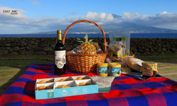 Our Picnic!