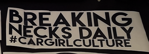 Breaking necks daily sticker