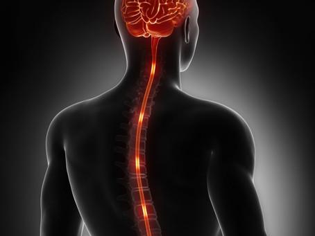 Активация мозга для лечения боли