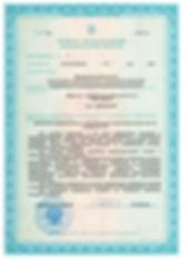 Лицензия 20.05.19 стр3.jpg