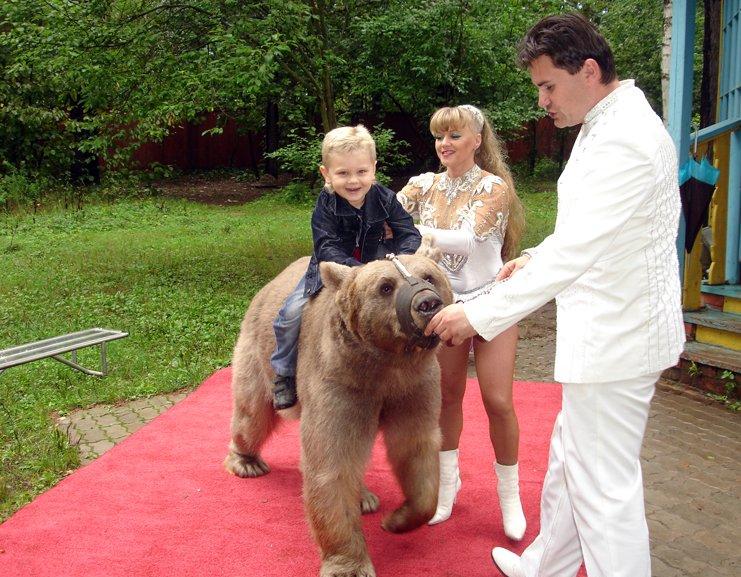 номер с медведем