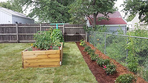 raised planter and garden beds