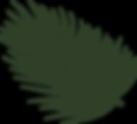 palm leaf logo, Beauty Lab