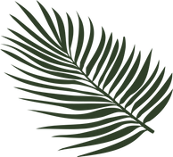 palm leaf logo, Beauty Lab