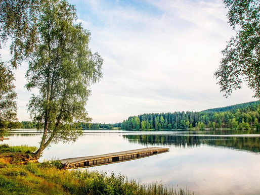 City Hikes #2 Sognsvann