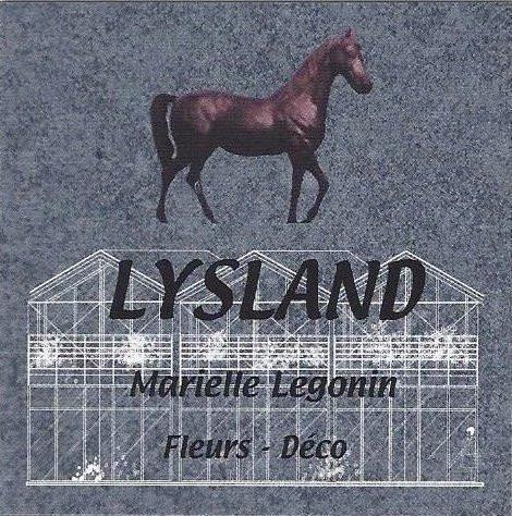 Logo Lysland.jpg