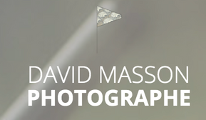 Logo David Masson.png