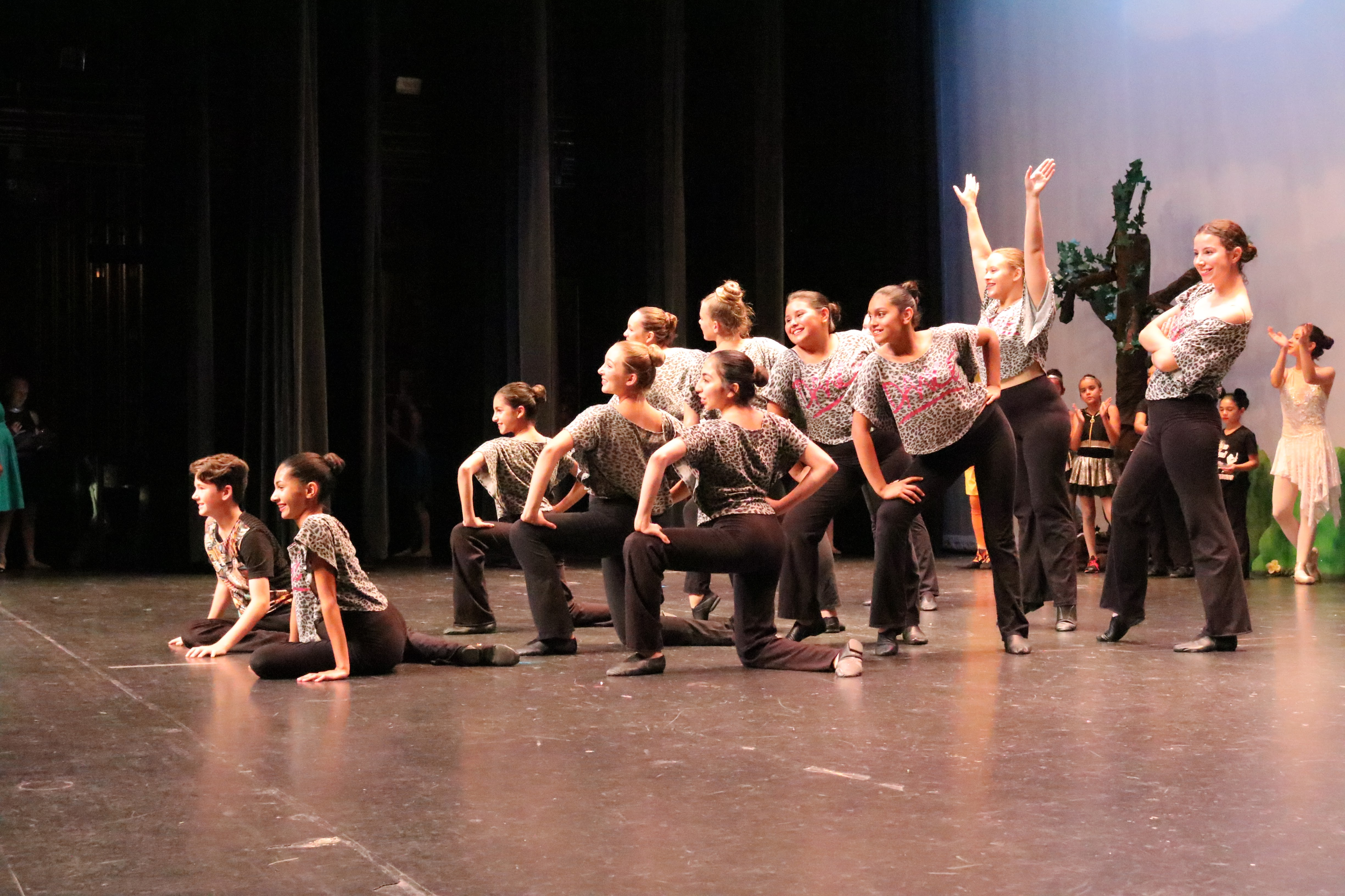 Mind Body Art School Of Dance