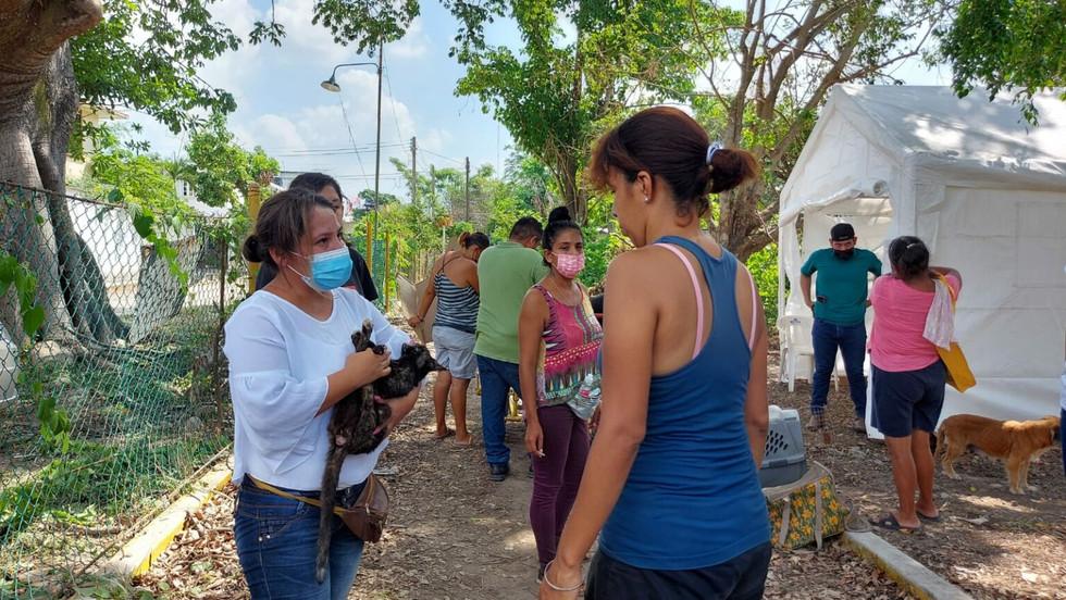 CAMPAÑA DE ESTERILIZACION A BAJO COSTO EN POZA RICA.