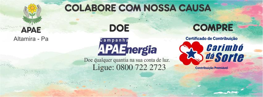 APAE- Altamira