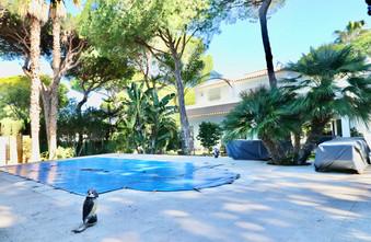 Pool mit gefliester Liegefläche