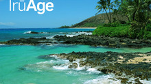 What's New at Morinda and Free Trip for 2 to Hawaii Contest