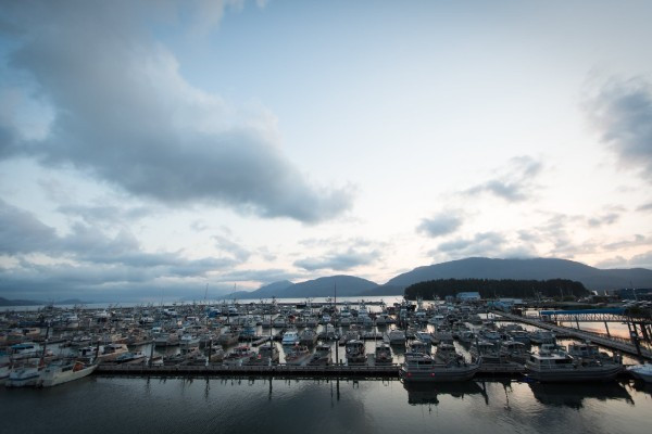 The Cordova harbor on a closed fishing period, everyone remains in their stalls!