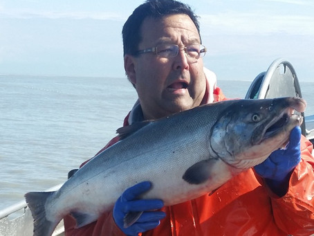 Copper River Sockeye Run Failure