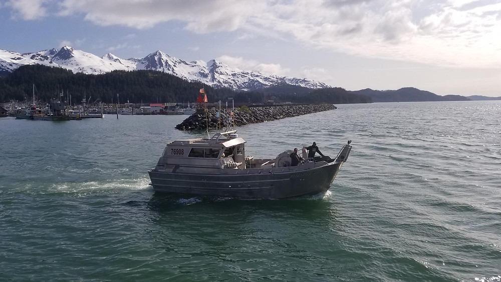 The Paradigm Shift leaving port to get ice and navigate to the fishing grounds for the season opener May 17.
