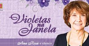 Novas datas Violetas na Janela