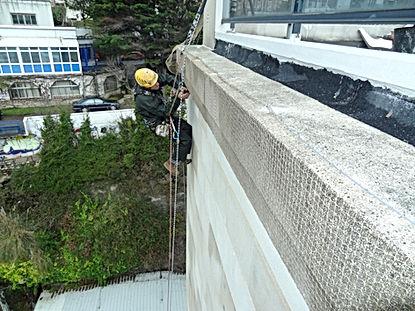 trabajos en altura en santander, redes anti palomas, protección de plagas, gorriones, gaviotas, nidos torrelavega santander